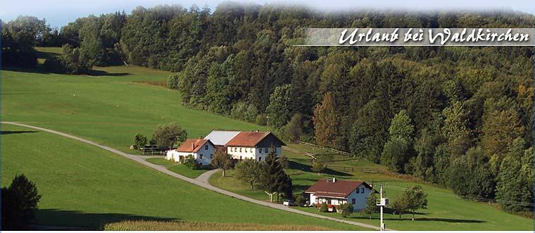 Ferienhaus in Waldkirchen